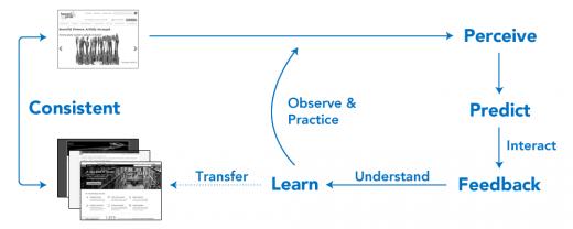 值得你深入了解的交互设计五大支柱